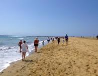 Dagens vandring längst stranden!
